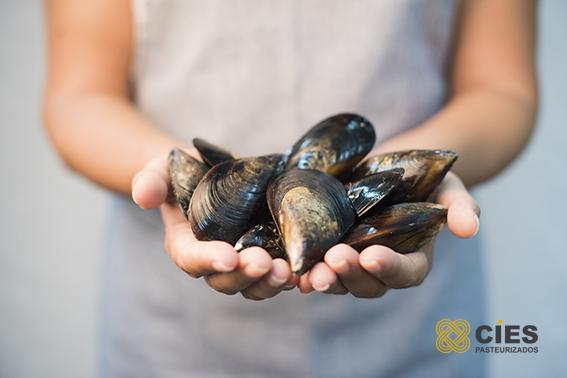 organic mussel